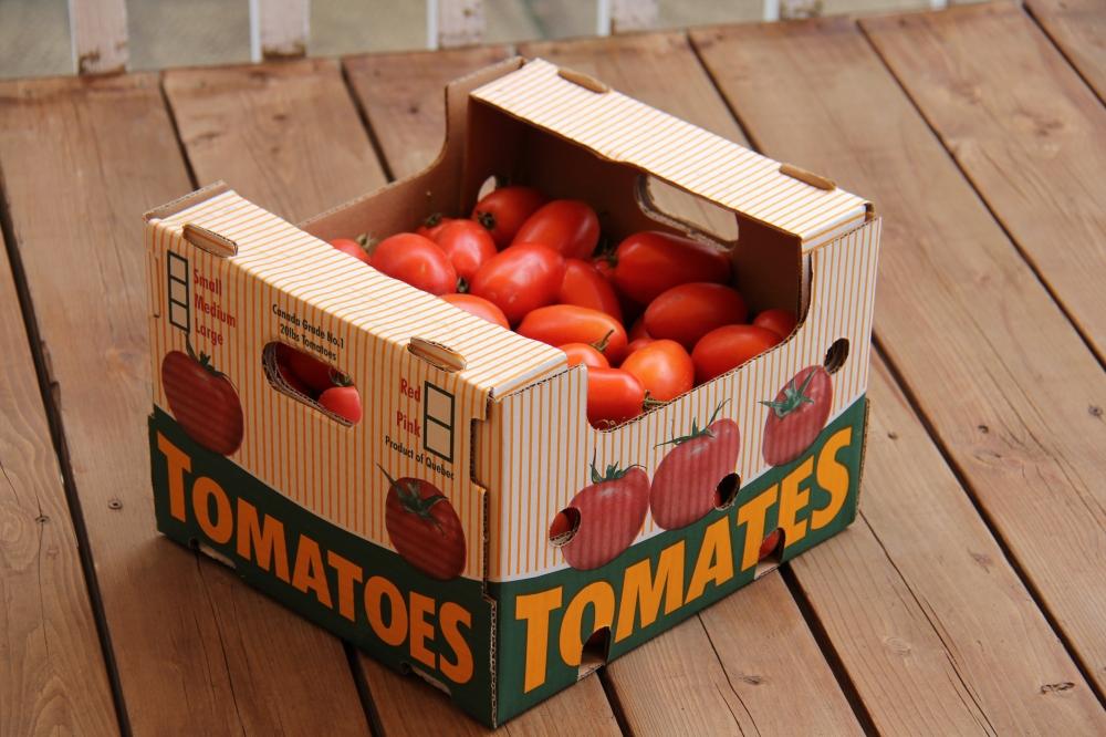 Tomates italiennes